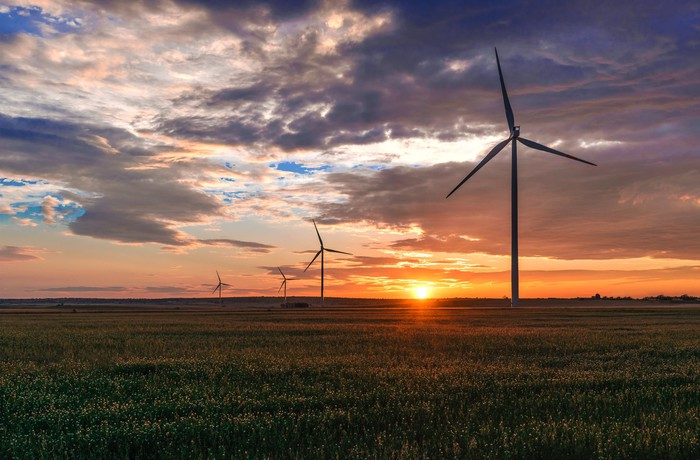 Wind turbines in a green field with the sun setting in the background.
