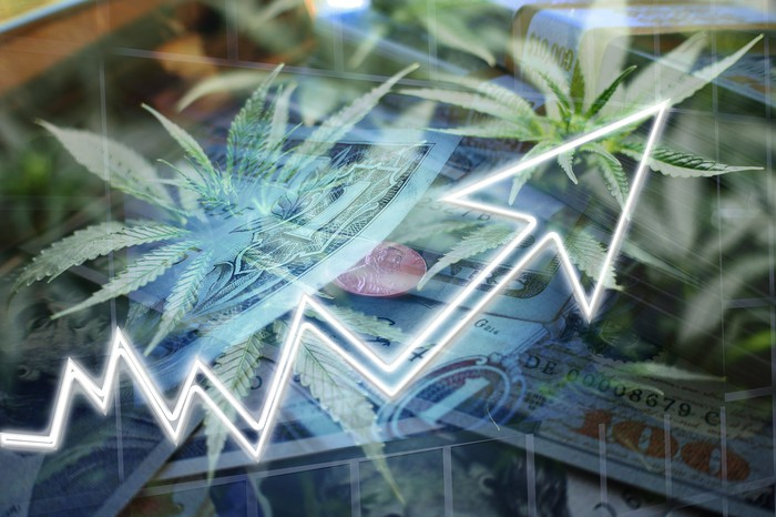 Line with arrow pointing up with cannabis plants and dollar bills in the background