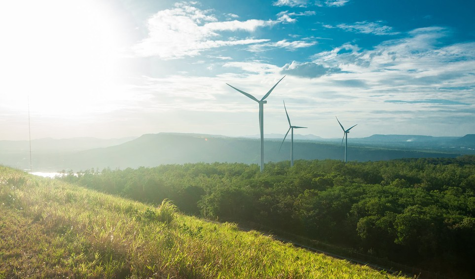 Wind Turbines on a Hill with Small Trees