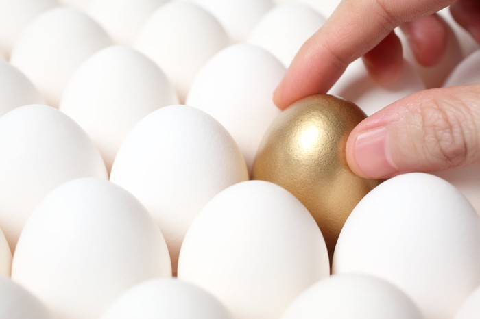 A golden egg surrounded by regular ones.