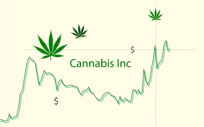 Rising stock chart is labeled Cannabis Inc with dollar signs and marijuana leaves decorating