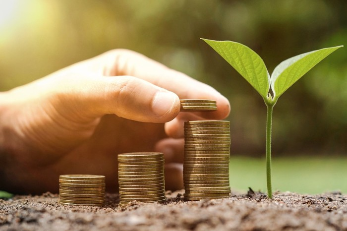 A stack of growing coins in the soil next to a growing plant.