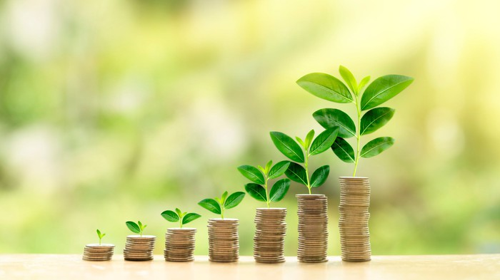 Plant shoots on rising stacks of coins, representing income growth.