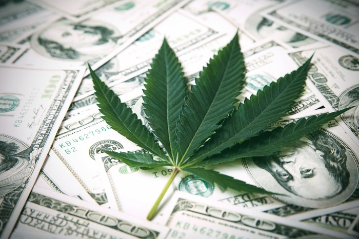 Marijuana leaf on top of a loose pile of $100 bills.