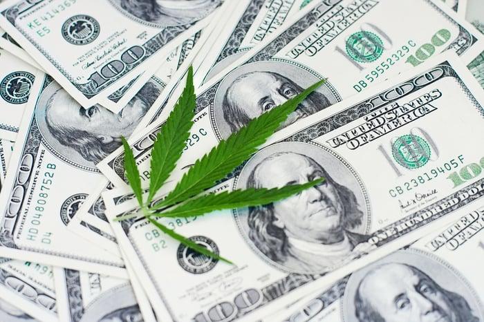 Cannabis leaf on a pile of $100 bills