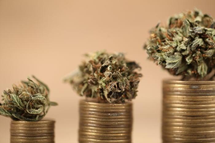 Bourgeons de marijuana séchés au sommet de piles de pièces de monnaie