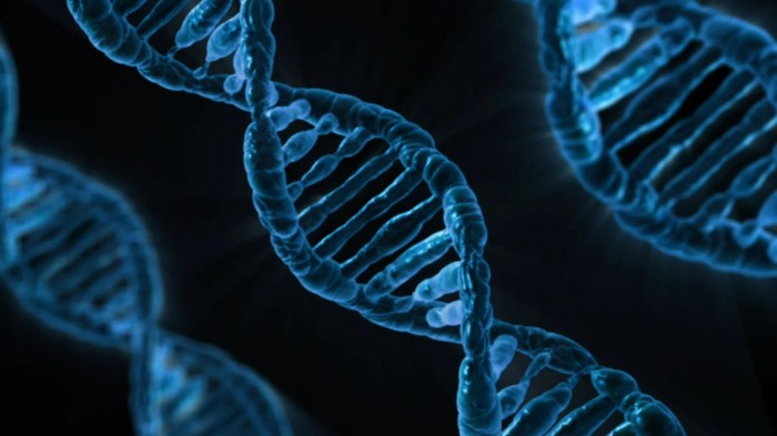 Three strands of DNA with image colored in blue.