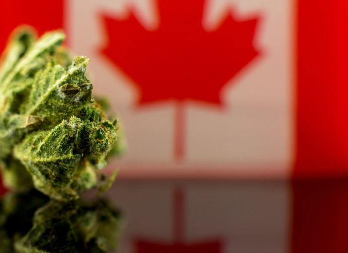 Marijuana bud in front of Canadian flag.