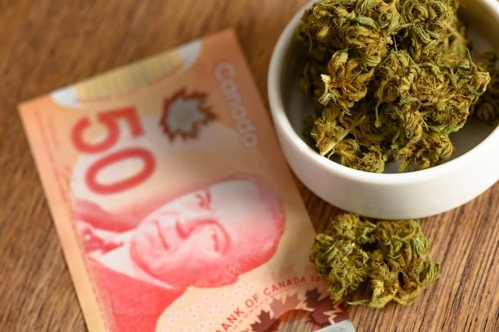marijuana buds next to Canadian money