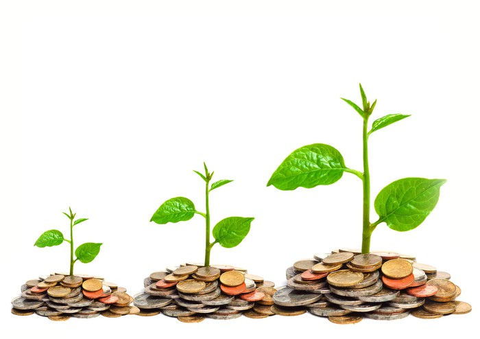 Three piles of coins, successively bigger, with plant shoots growing from them.
