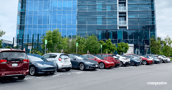 Many EVs charging in front of an office building