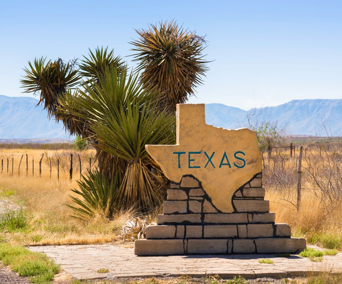 A Texas-shaped Texas road sign on a brick base, with a yucca growing in the background and distant mountains on the horizon.