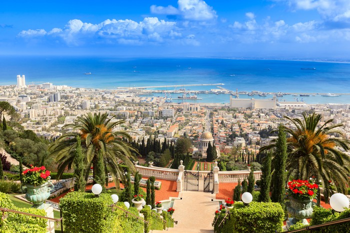 The port city of Haifa in Israel, with palms in the foreground and the Mediterranean in the background.