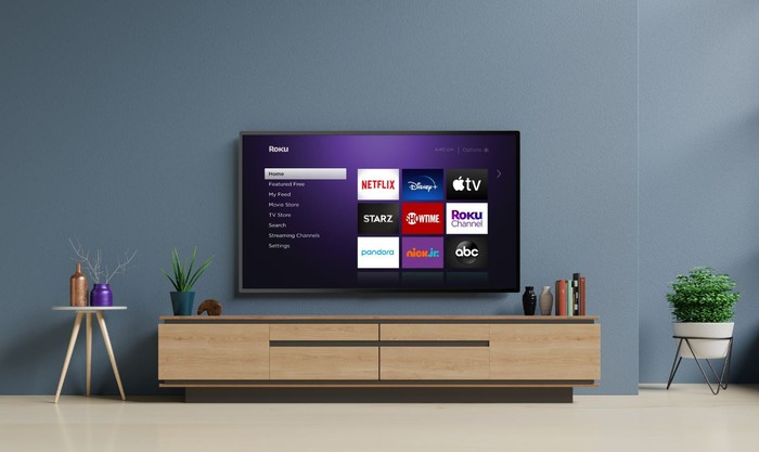 A wall-mounted TV displaying the Roku home screen next to a potted plant and a side table