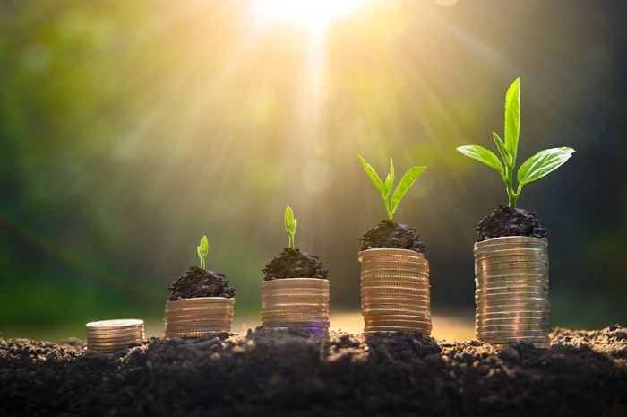 Plants sprouting from stacks of coins.