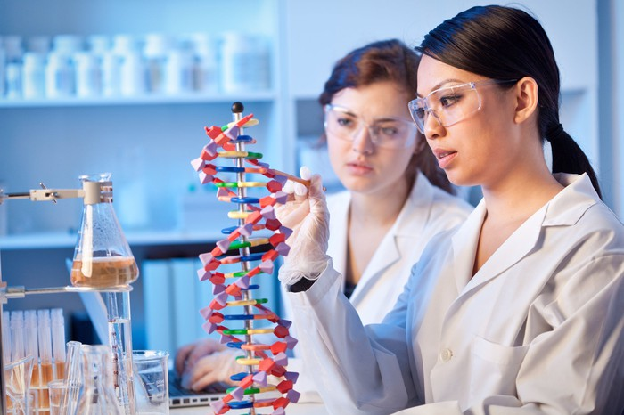 Two female researchers studying a DNA double helix model.