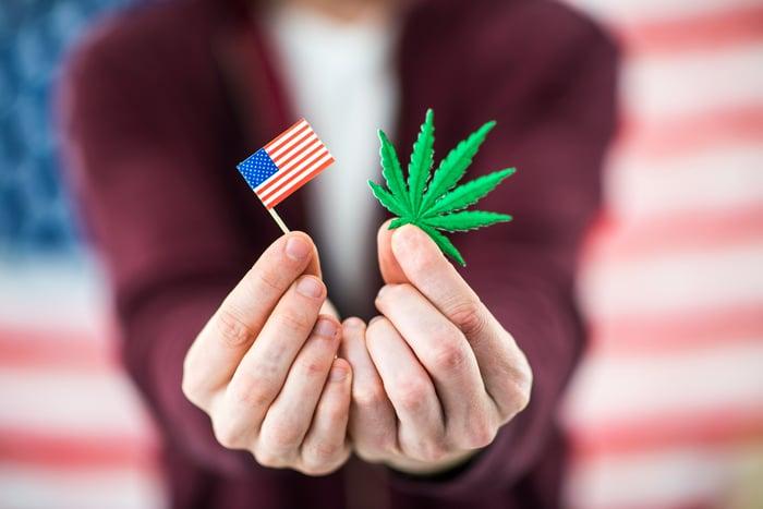 A man holding a marijuana leaf and a small American flag.