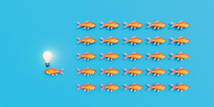 Un banc de poissons nageant dans un sens avec un poisson solitaire nageant dans l'autre sens avec une ampoule au-dessus de sa tête comme s'il avait une idée différente.