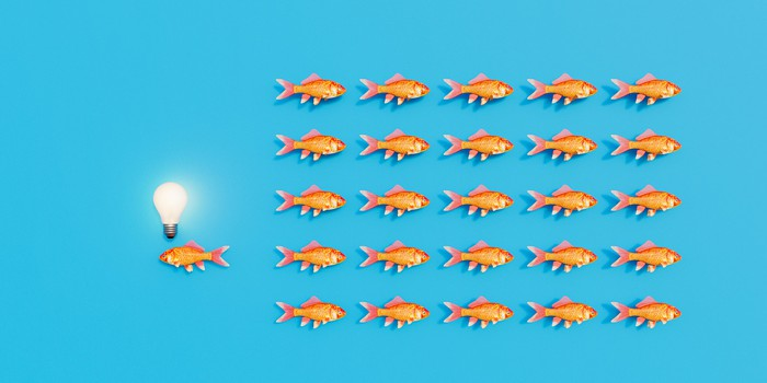 A school of fish swimming one way with a lone fish swimming the other way with a light bulb over its head like it has a different idea.