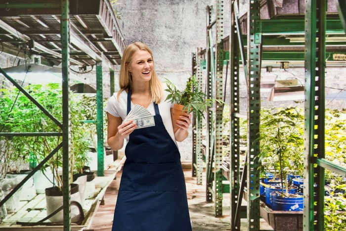 Woman in cannabis greenhouse holding cash and a marijuana plant _