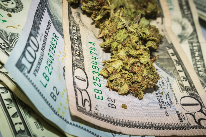 Ground up cannabis flower rests on a bed of $50 and $100 bills.