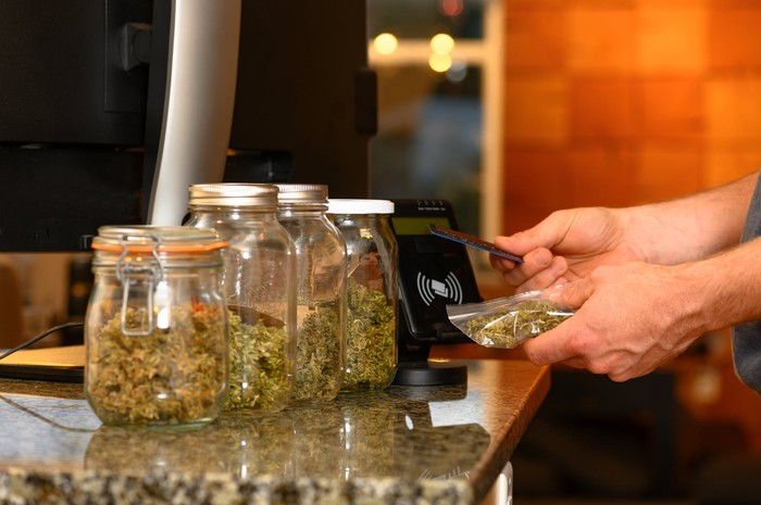 marijuana flower buds in jars at dispensary, with customer paying for a bag