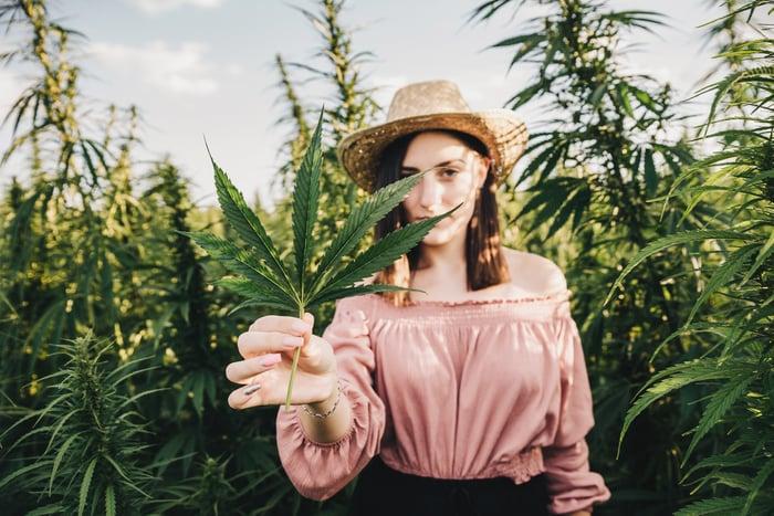 A femaile holding a cannabis plant