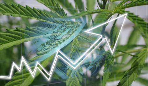 Cannabis with chart going up