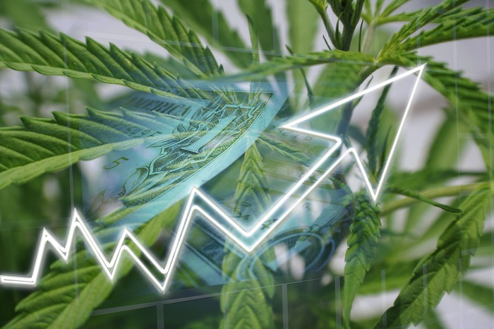 A cannabis plant with an overlaid image of a white line with an arrow trending up and a $1 bill