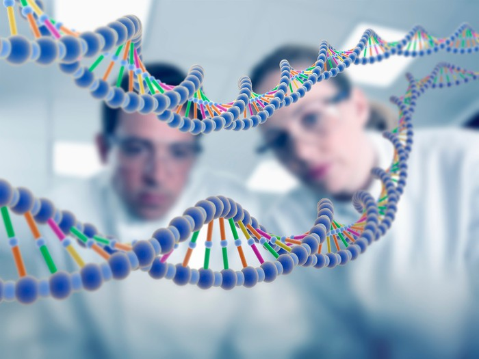 Scientists study strands of DNA