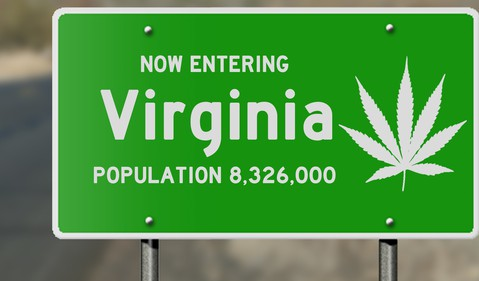 Cannabis Virginia sign