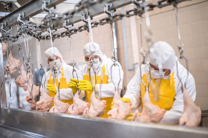 Three workers in protective gear working at a poultry processing plant.