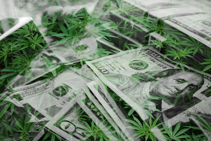 Stack of cash with marijuana leaves.