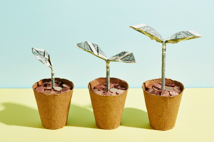 3 flower pots with pennies growing into dollars