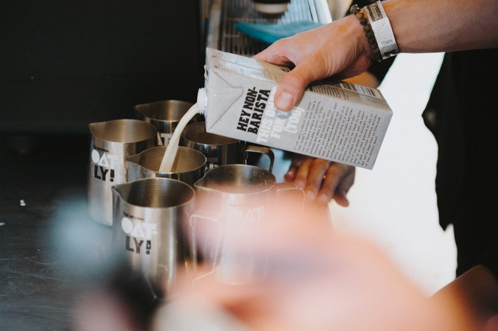 A barista pouring Oatly oat milk into a small, metal pitcher.