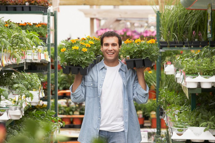 A person carries two trays of flowers inside of a greenhouse with many other plants.