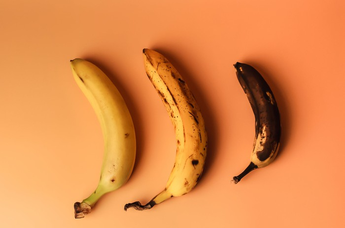 Three bananas, one ripe, one rotting, and one rotten.