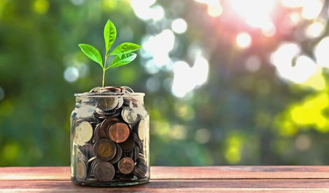 jar full of coins with plant growing from it savings money growing compound interest getty