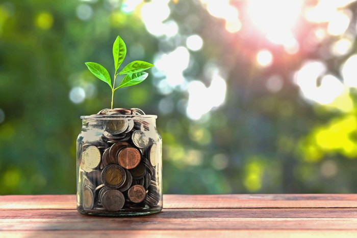 A seedling grows out of a jar of coins.
