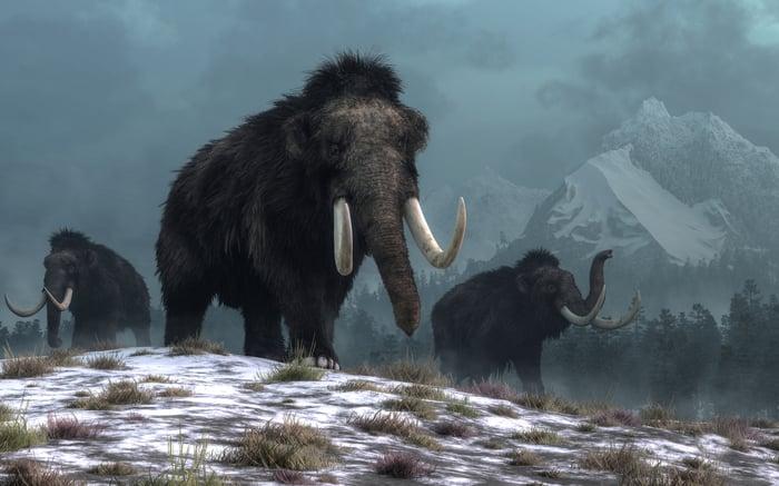 Trois mammouths laineux sur un sol couvert de neige avec des montagnes en arrière-plan.