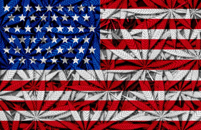 American flag with marijuana plants in the background