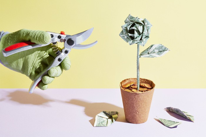 A person prunes an origami flower made of cash.