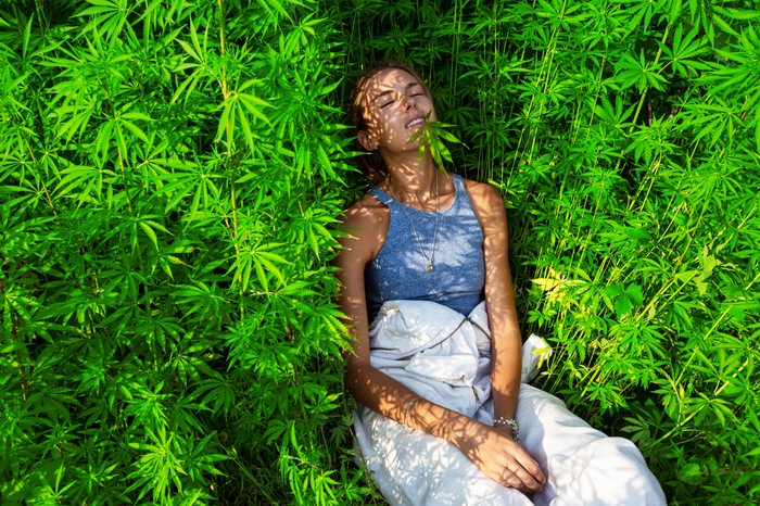 A young woman lays down in a field of marijuana plants.