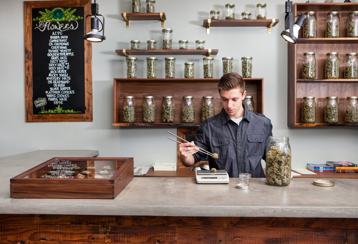 A worker weighs cannabis flower on a scale from behind the counter at a cannabis dispensary.