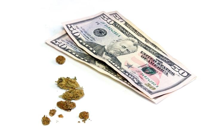 Cannabis buds next to three $50 bills.