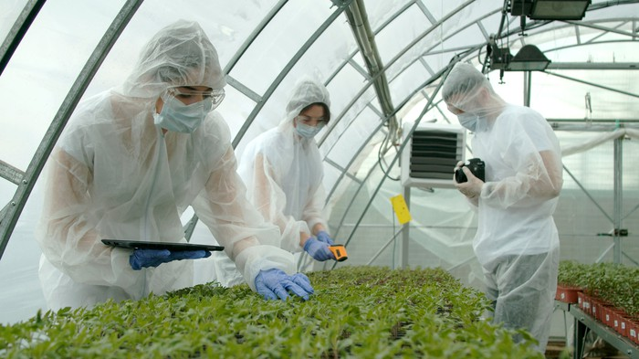 People checking on plants in a greenhouse.