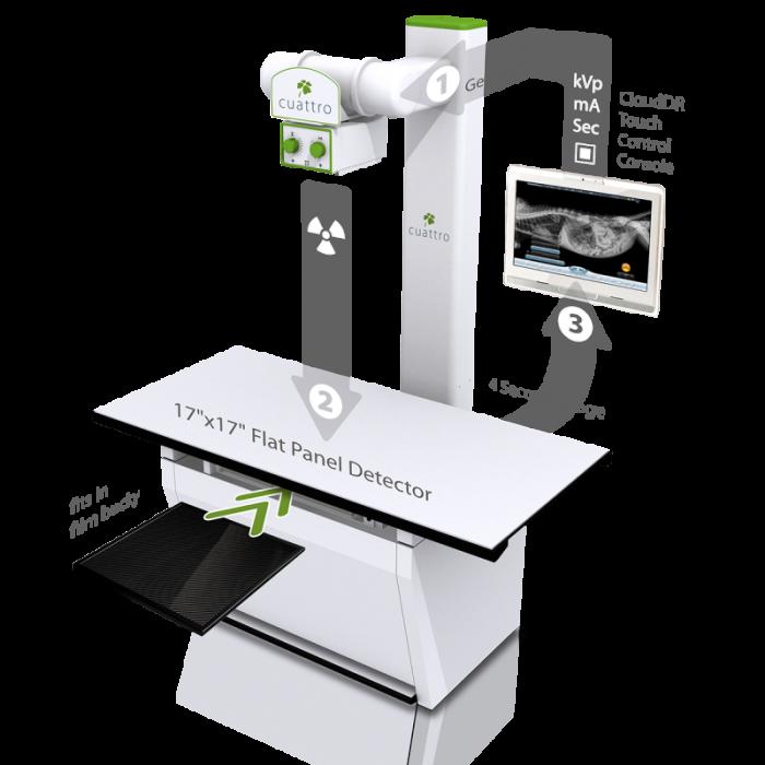 Veterinary X-ray machine