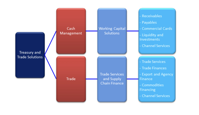 Citigroup treasury and trade solutions chart.