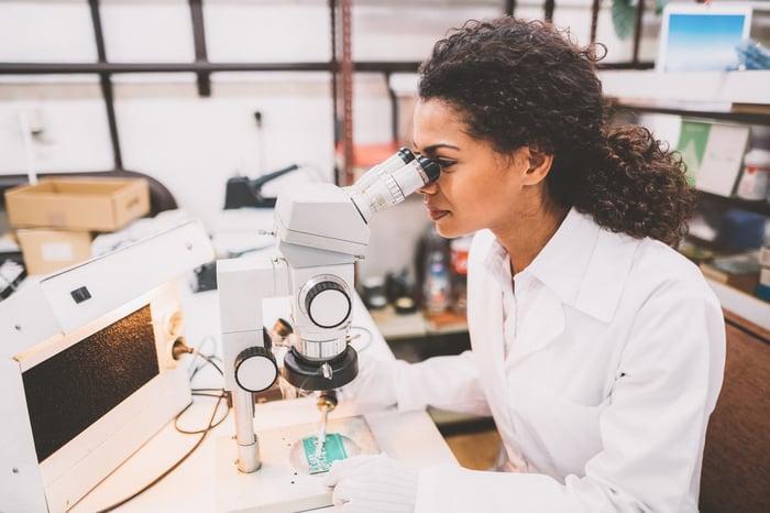 Un technicien examine une puce au microscope.