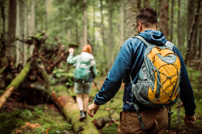 Two hikers walking through a dense forest.